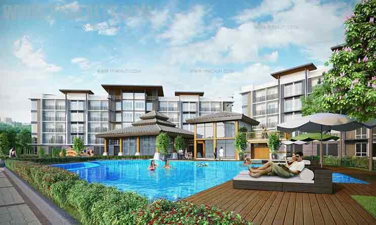 Asiana Oasis - Pool