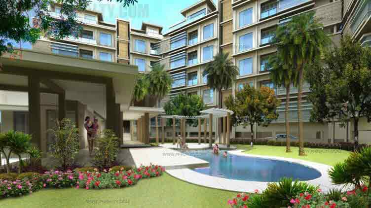 Vimana Verde Residences - Swimming Pool