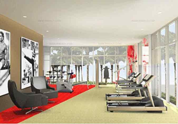 La Vie Flats - Gym