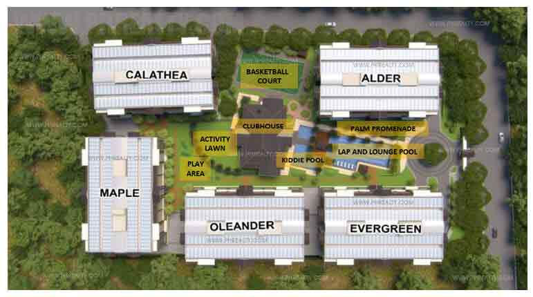 The Birchwood - Site Development Plan