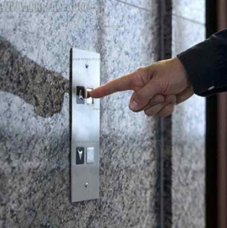 Zitan - Elevator