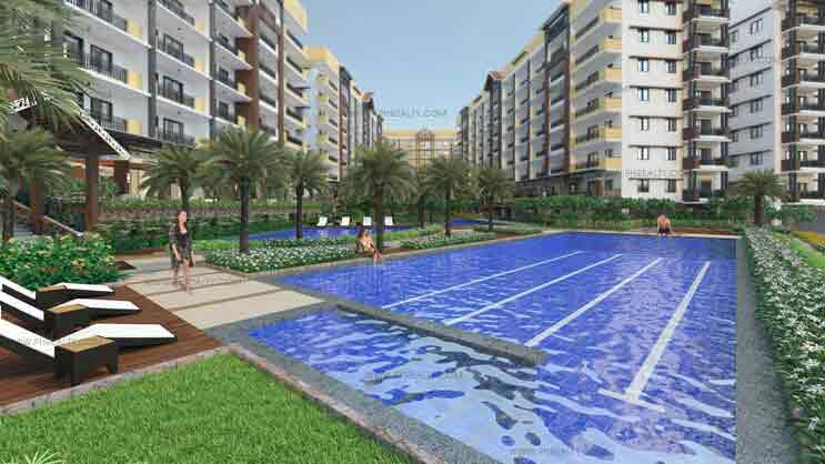 Alea Residences - Lap Pool