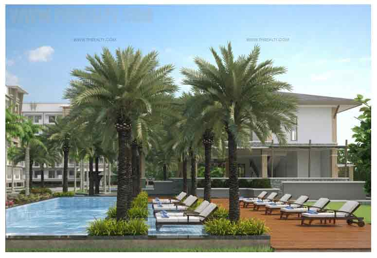 Levina Place - Pool Side Tree Court