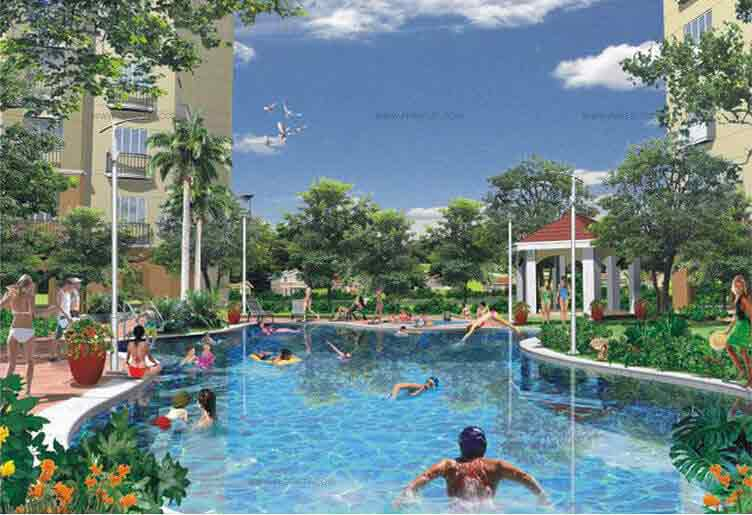Greenhills Heights - Swimming Pool