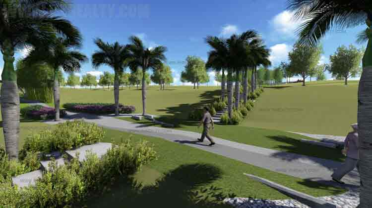 Pahara - Linear Park