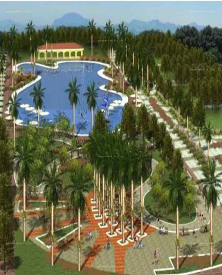 Florida Sun Estate - Amenities