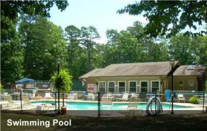 The Village At Treelane - Swimming pool