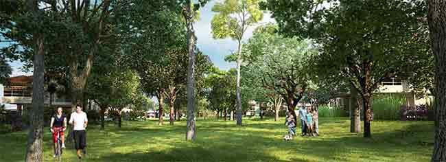 Soliento Nuvali -  Nature Park