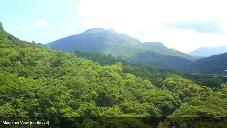 Air Residences - Mountain View - Northeast