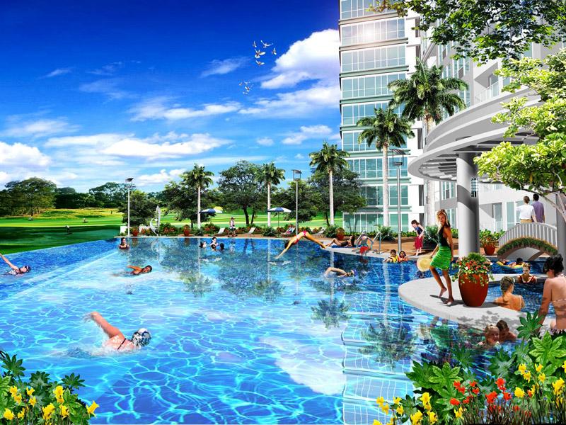 8 Forbestown Road - Infinity Swimming Pool