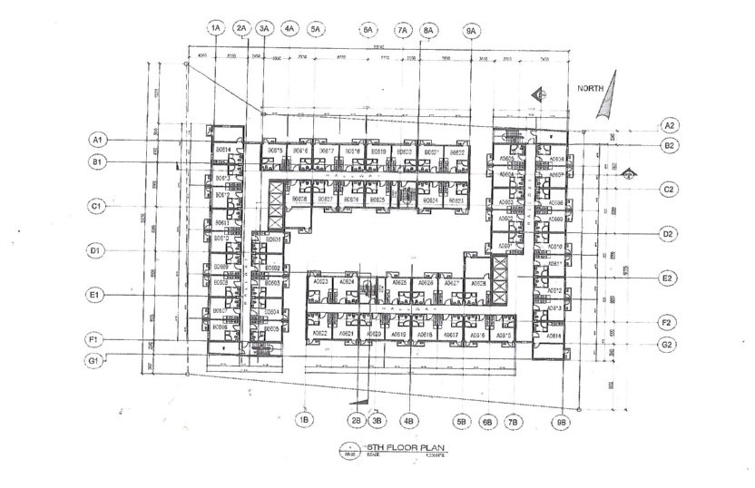 Torre De Florencia - Typical Floor Plan