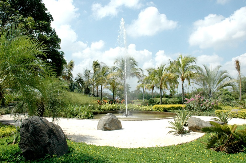 Caribe At The Islands - Garden