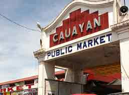 Real Estate in Cauayan