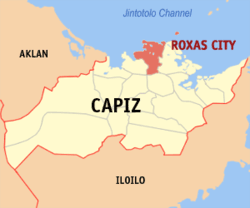 Real Estate in Roxas