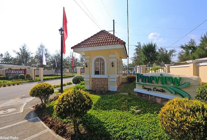 Pineview Tanza