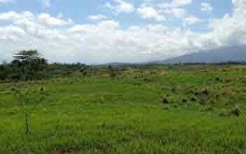Lumira Nuvali