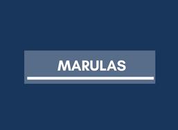 Real Estate in Valenzuela