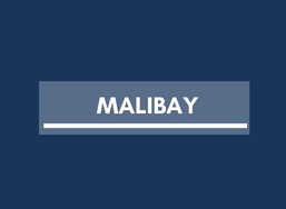 Real Estate in Malibay